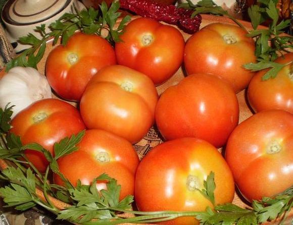 Острые помидоры на зиму 12 лучших рецептов консервации правила хранения
