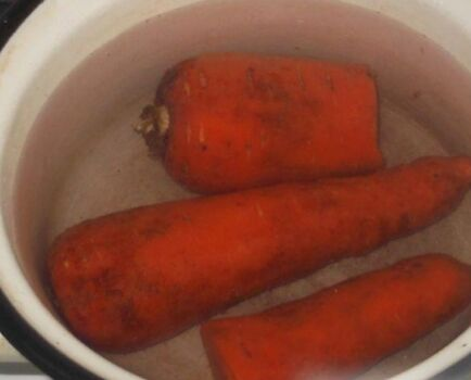 Заливное из рыбы: 14 рецептов закуски с желатином